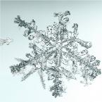 Untitled (Snowflake)2006